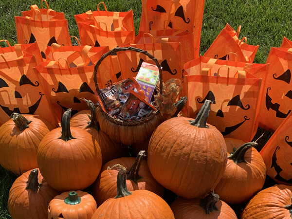 fall pumpkins and halloween candy bags
